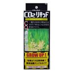 日本動物薬品 CO2リキッド アンプル 30ml×2本