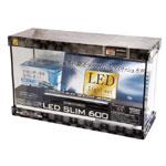 レグラスフラットF-600SH/B S-LEDライトセット