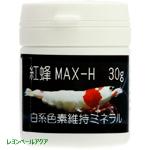 紅蜂SP MAX-H